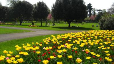 Dublino Herbert Park